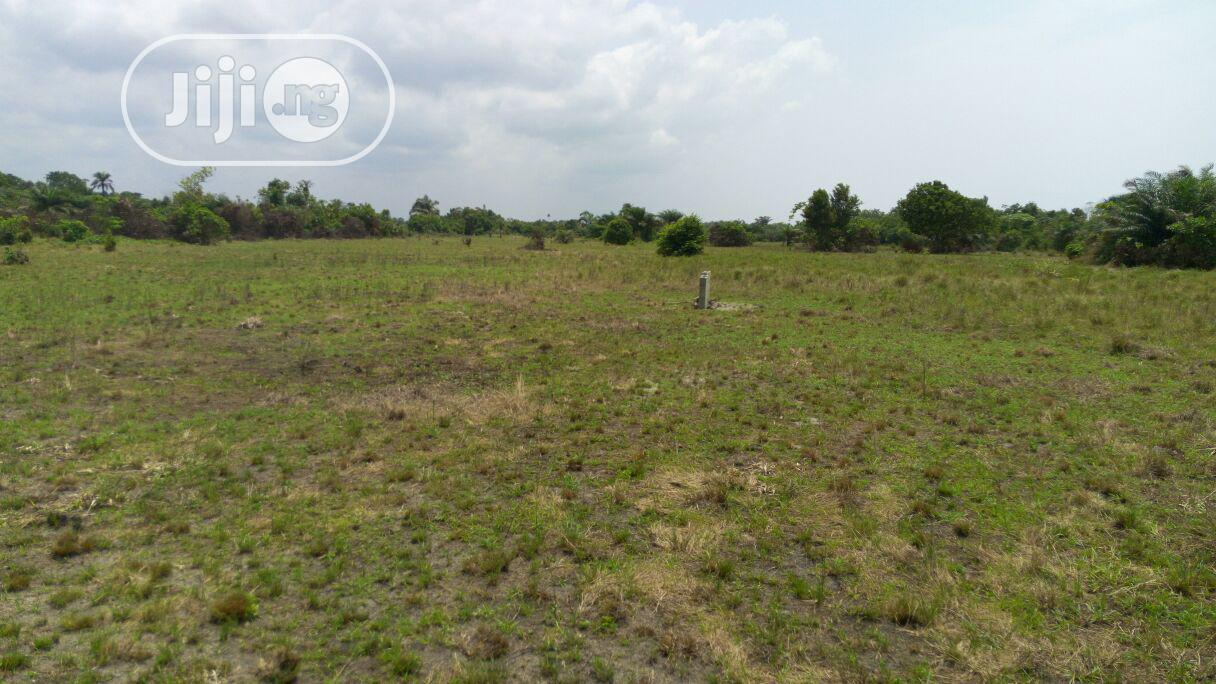 Acres of Farm Land at Owode Egba for Sale | Land & Plots For Sale for sale in Obafemi-Owode, Ogun State, Nigeria
