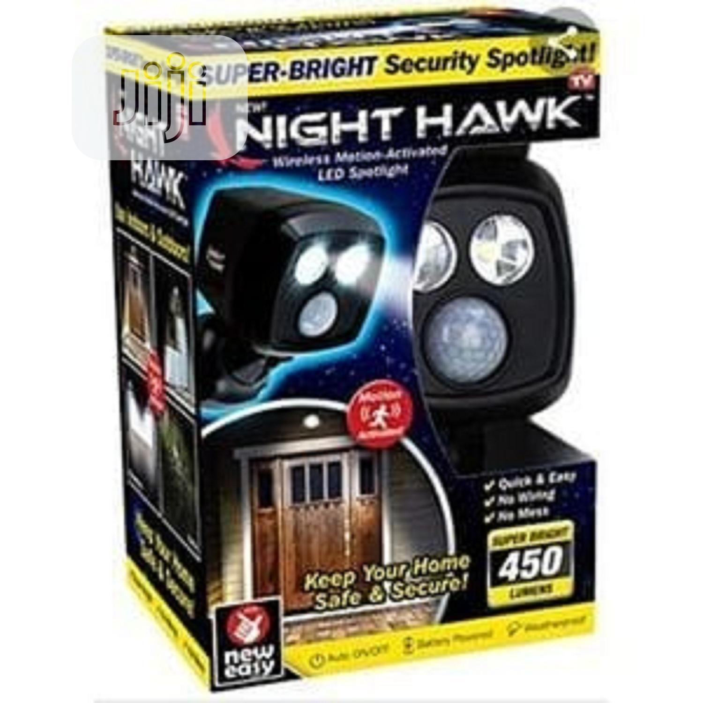Night Hawk Motion Sensor LED Light