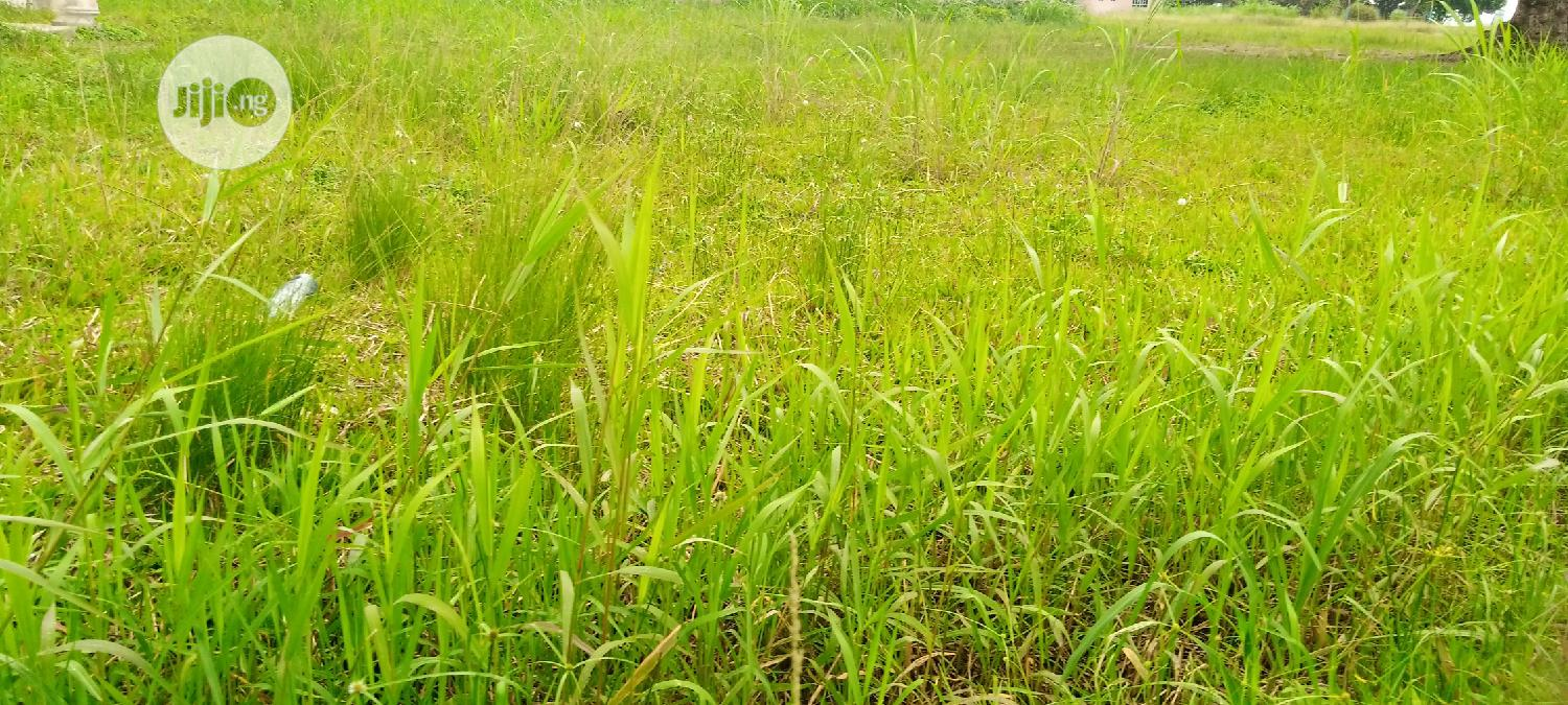 Archive: Lekki Pinnacle Estate Land For Sale