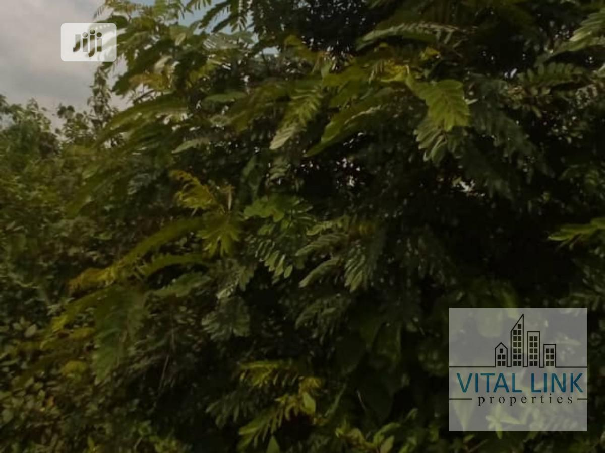 A Plot Of Land For Sale | Land & Plots For Sale for sale in Osogbo, Osun State, Nigeria