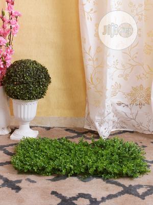 Ball Shade Flower | Garden for sale in Lagos State, Ikorodu