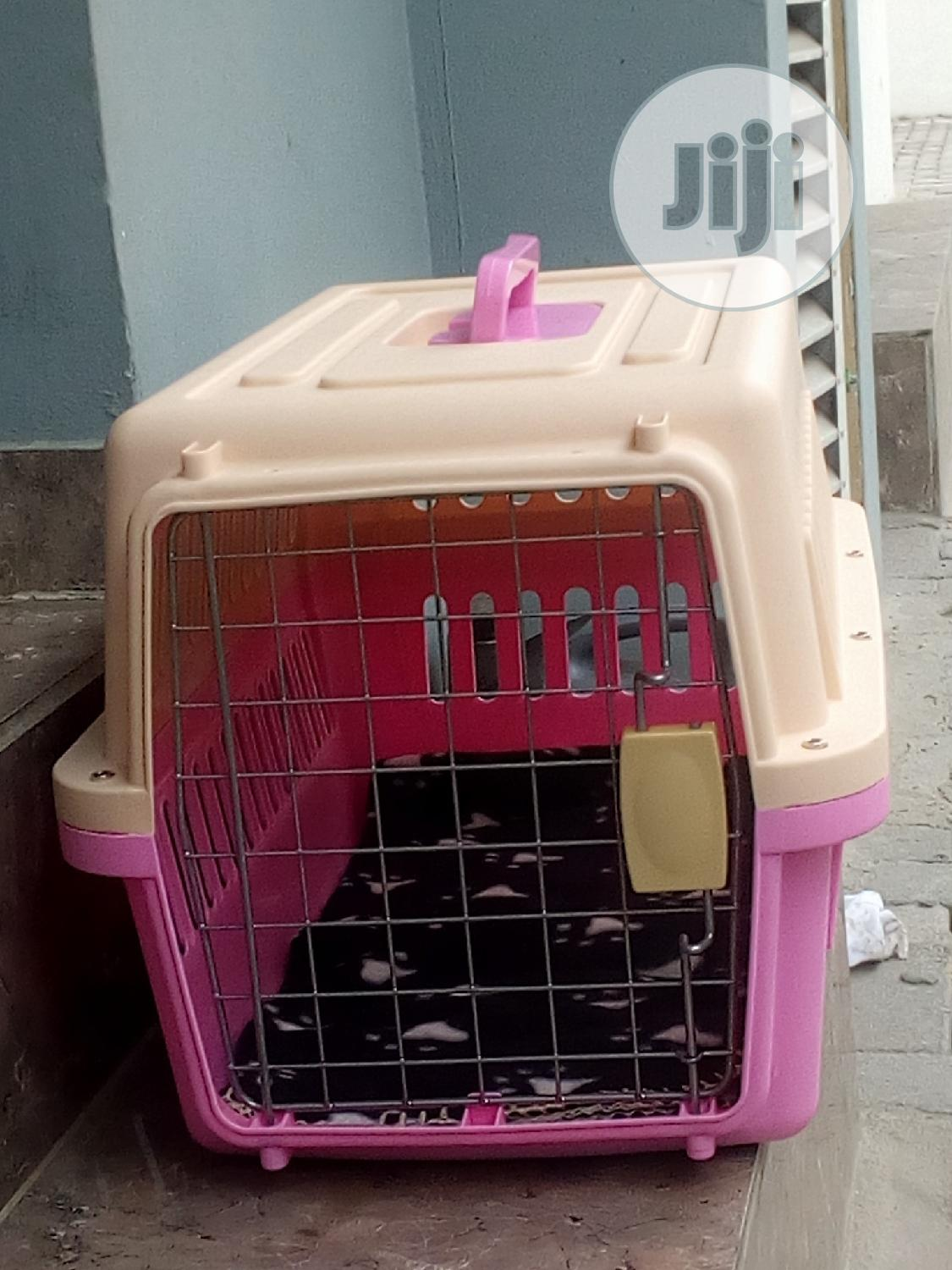 Plastic Carrier For Traveling With Pet.