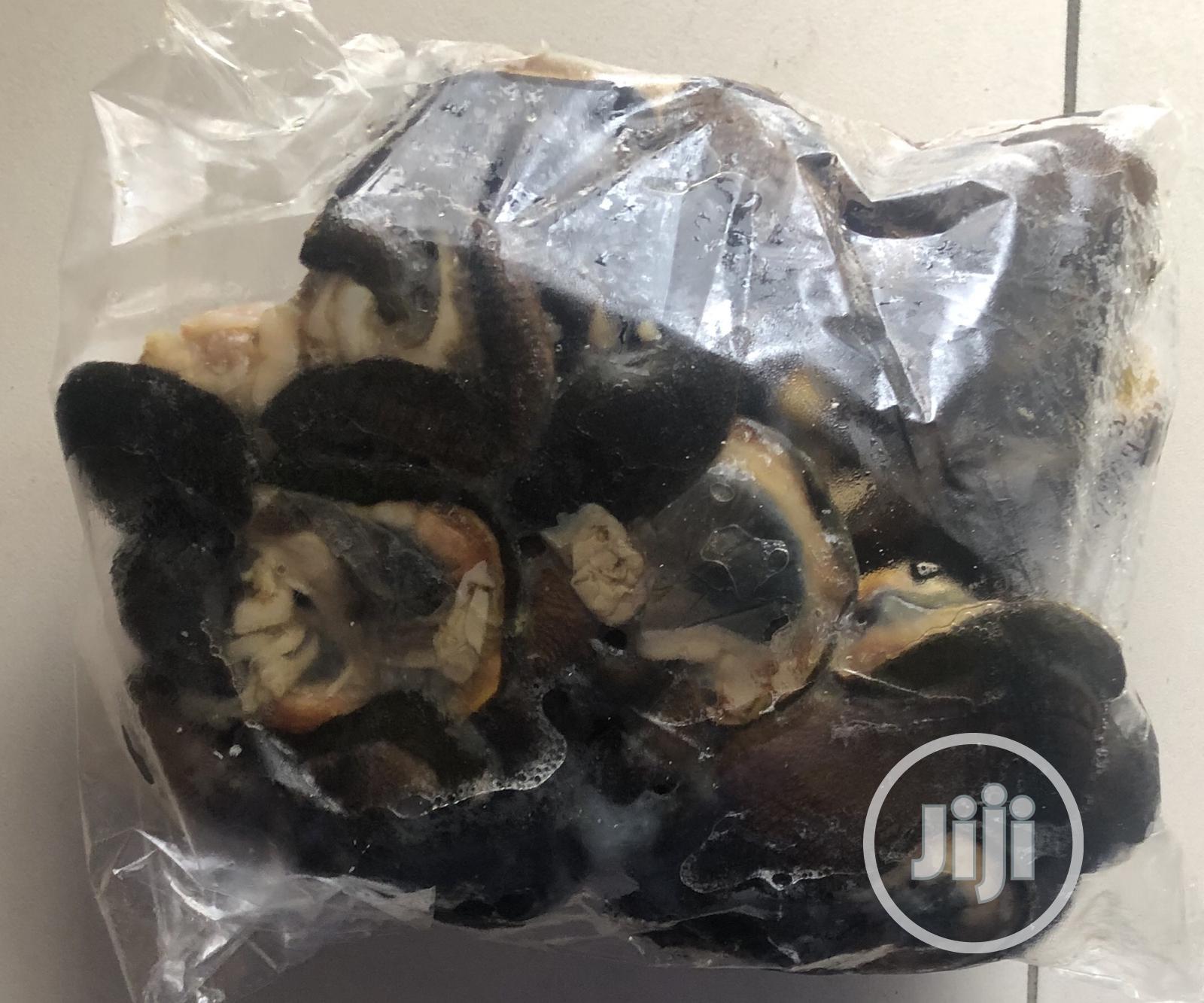 Archive: Jumbo Snails