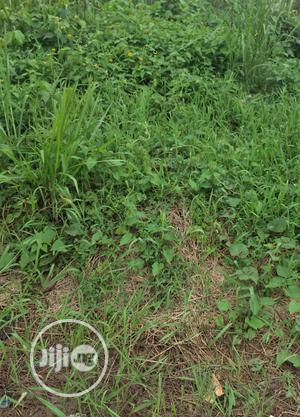 Cheap Half Plot for Sale at Dosumu St, Aruna College Rd Ogba | Land & Plots For Sale for sale in Lagos State, Ikeja