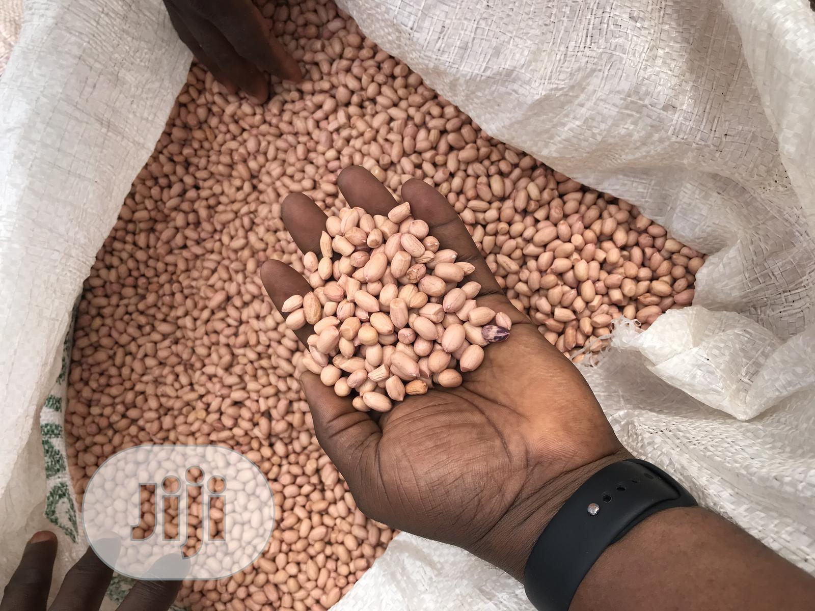 Raw Groundnut (Java Peanut) | Feeds, Supplements & Seeds for sale in Gboko, Benue State, Nigeria