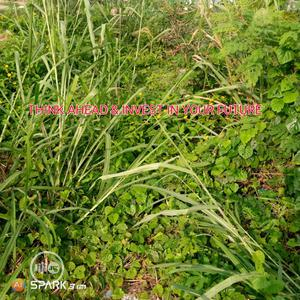 Land for Sale in Agbara | Land & Plots For Sale for sale in Lagos State, Agbara-Igbesan