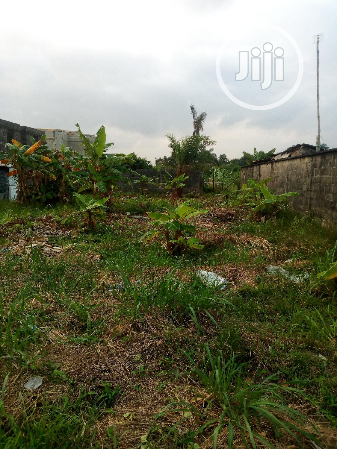 Archive: 4 Plots of Land With Governors Consent (Dry Land)