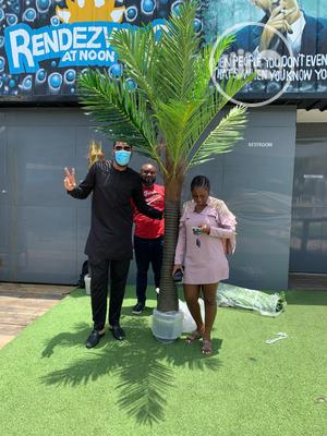 Artificial Palm Flower Plantі   Garden for sale in Lagos State, Agege