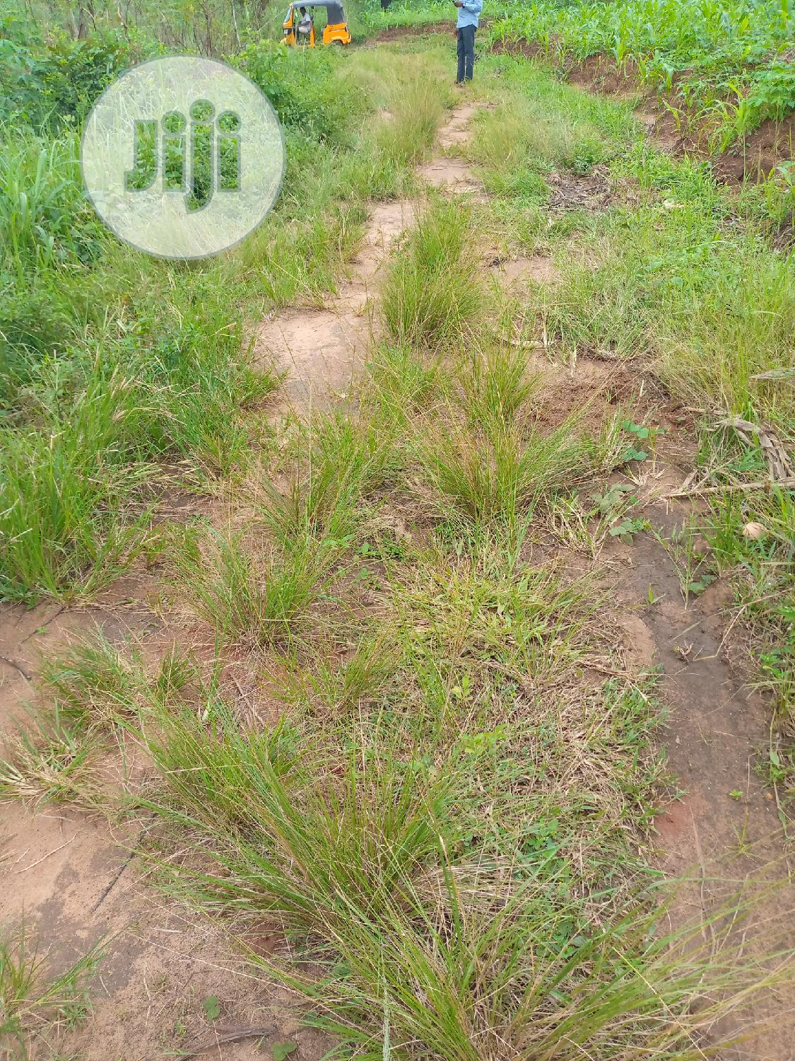 Land for Sale | Land & Plots For Sale for sale in Awka, Anambra State, Nigeria