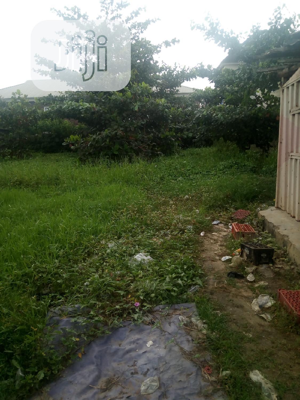 Full Plot Of Land For Lease In Amuwo Odofin   Land & Plots for Rent for sale in Amuwo-Odofin, Lagos State, Nigeria