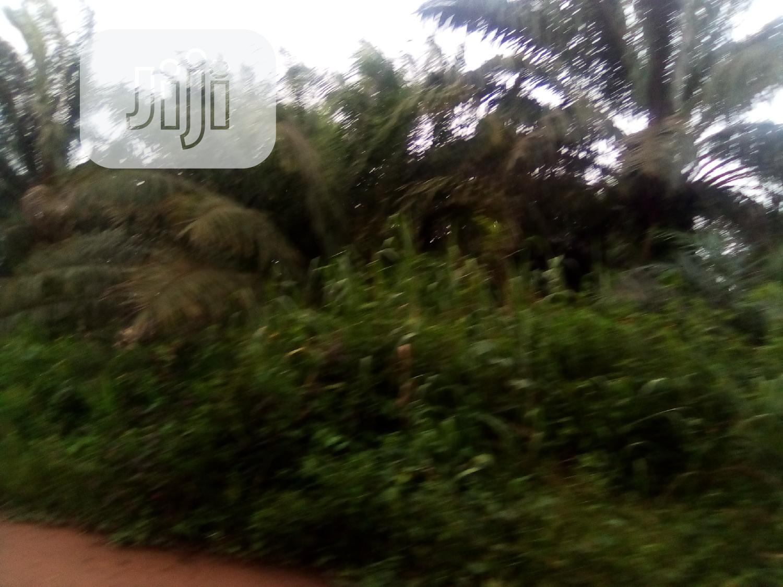 Cheap Plots Of Land, Off Benin Abraka Road | Land & Plots For Sale for sale in Ikpoba-Okha, Edo State, Nigeria