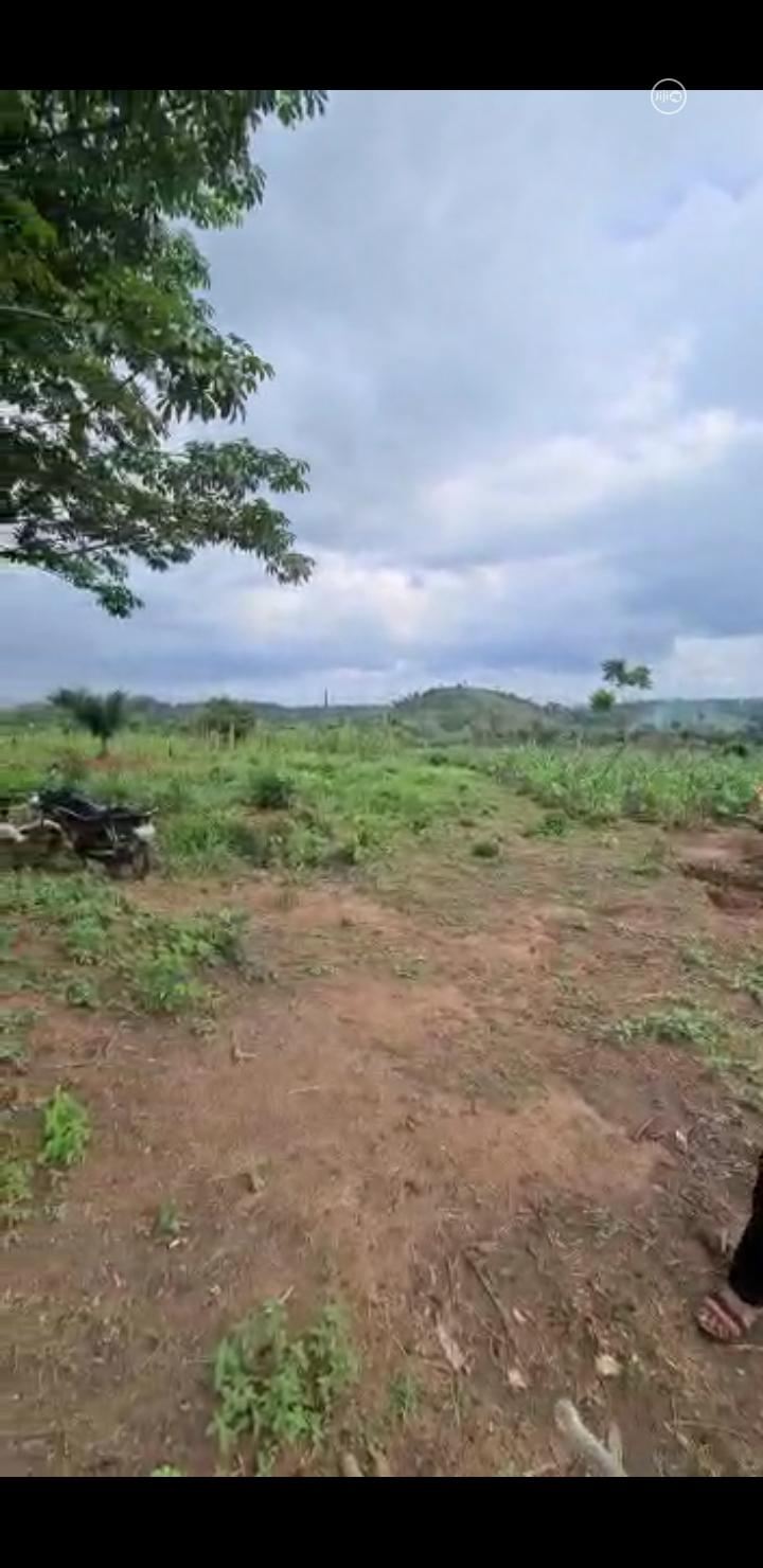 Land for Sale in Asaba Delta State | Land & Plots For Sale for sale in Oshimili South, Delta State, Nigeria