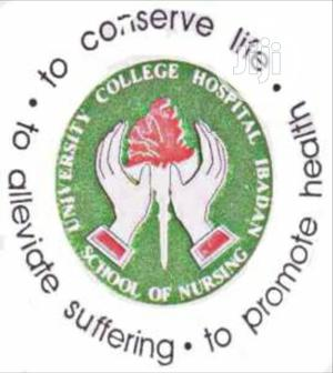 UCH School Of Nursing, Ibadan Past Questions & Answers | Child Care & Education Services for sale in Oyo State, Ibadan