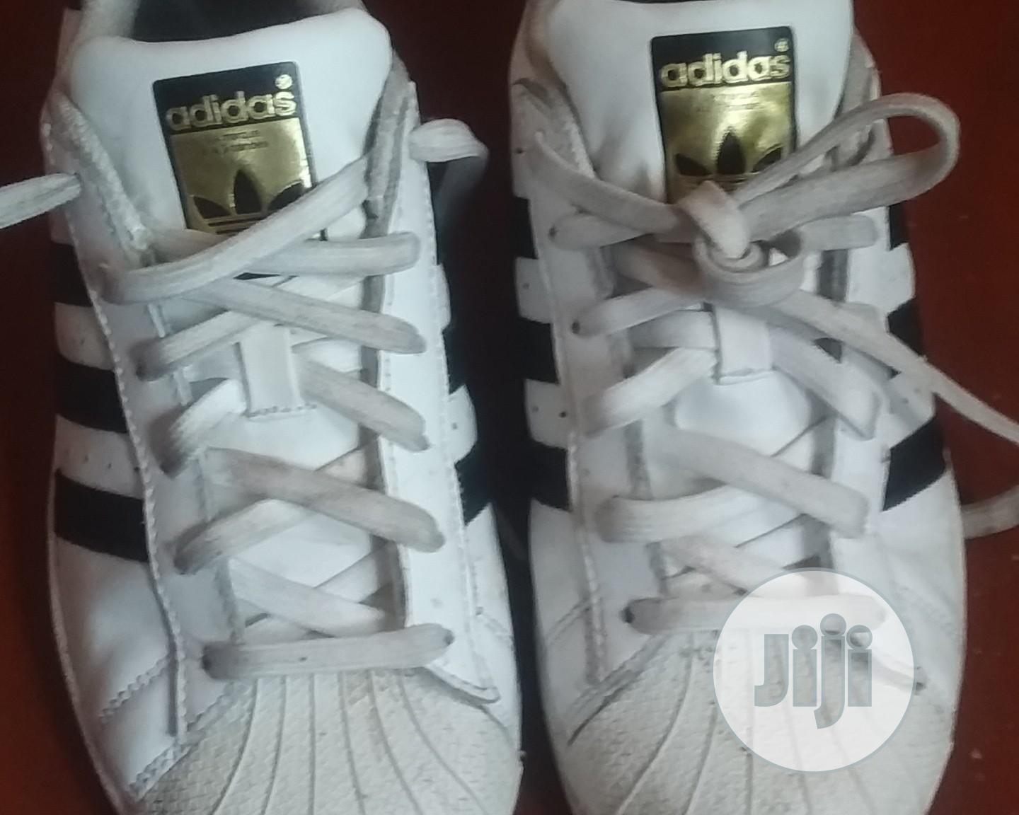 Archive: Canvass and Trainers Direct