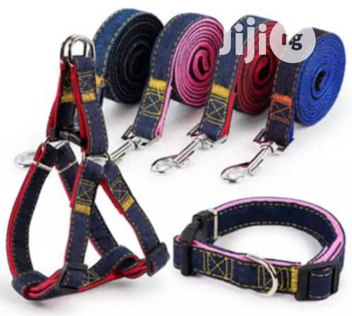 Dog Harness, Collar And Leash