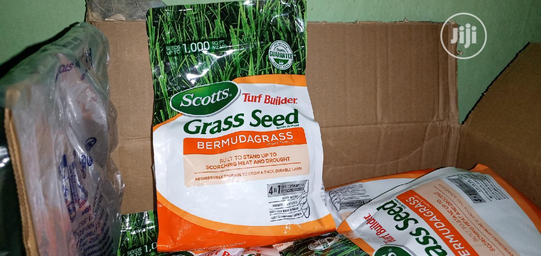Grass Seed(Bermuda) | Feeds, Supplements & Seeds for sale in Kaduna, Kaduna State, Nigeria
