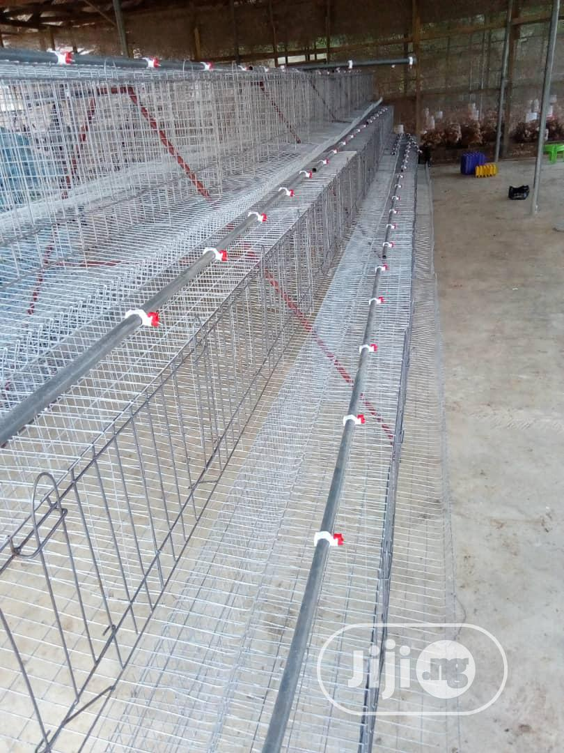 Nigerian Poultry Cage