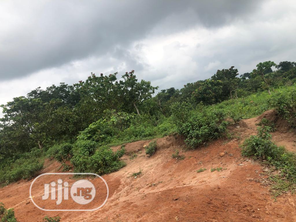 Archive: 500 Hectres Farmland Along Kaduna-Abuja Express Way