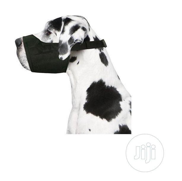 Four Paws Walk About Quick Fit (Comfort | Pet's Accessories for sale in Amuwo-Odofin, Lagos State, Nigeria