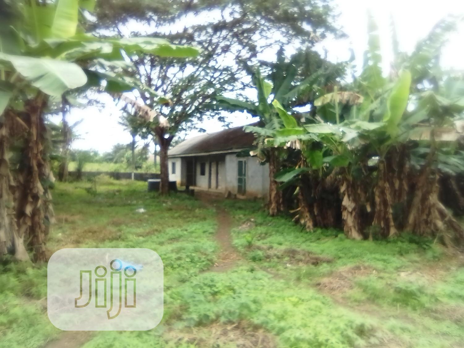 Survey Plan And Originao | Commercial Property For Sale for sale in Badagry, Badagry, Nigeria