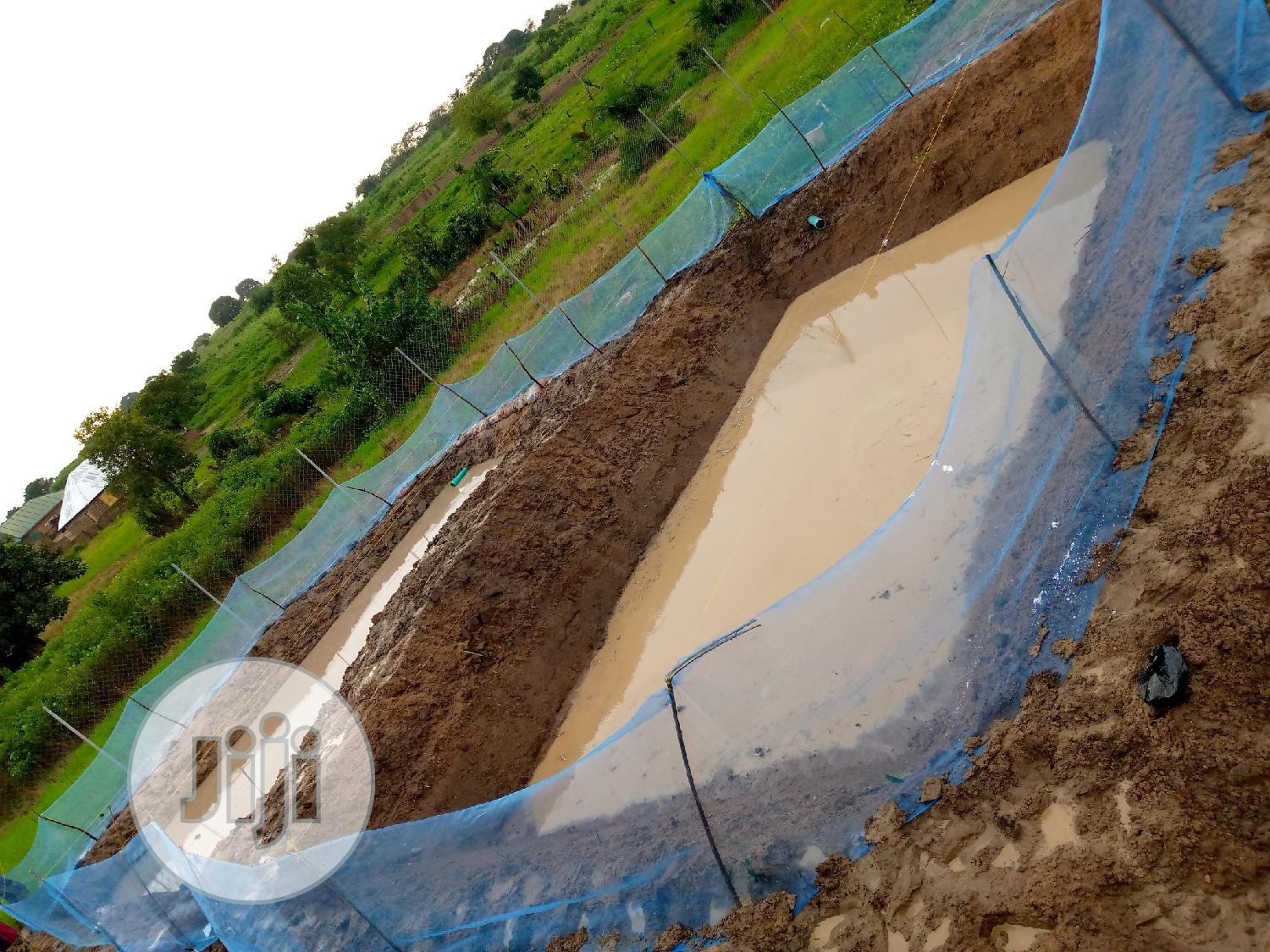 Archive: Successful Digging Of Ponds For Rearing Of Fish