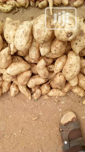 Sweet Potatoes in Abuja - Portion   Meals & Drinks for sale in Abuja (FCT) State, Gwarinpa
