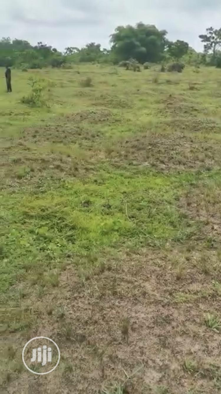 Archive: 2 and Half Plot of Land for Sale