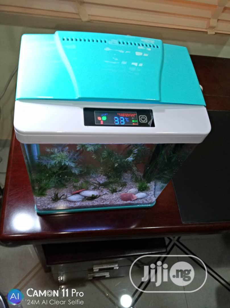 Aquarium With Temperature Regulator For Sale