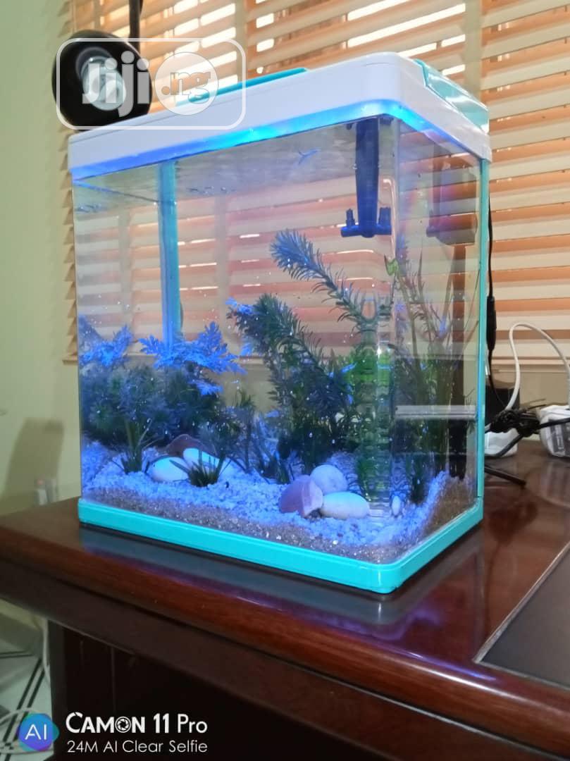 Aquarium With Temperature Regulator For Sale   Fish for sale in Ikeja, Lagos State, Nigeria