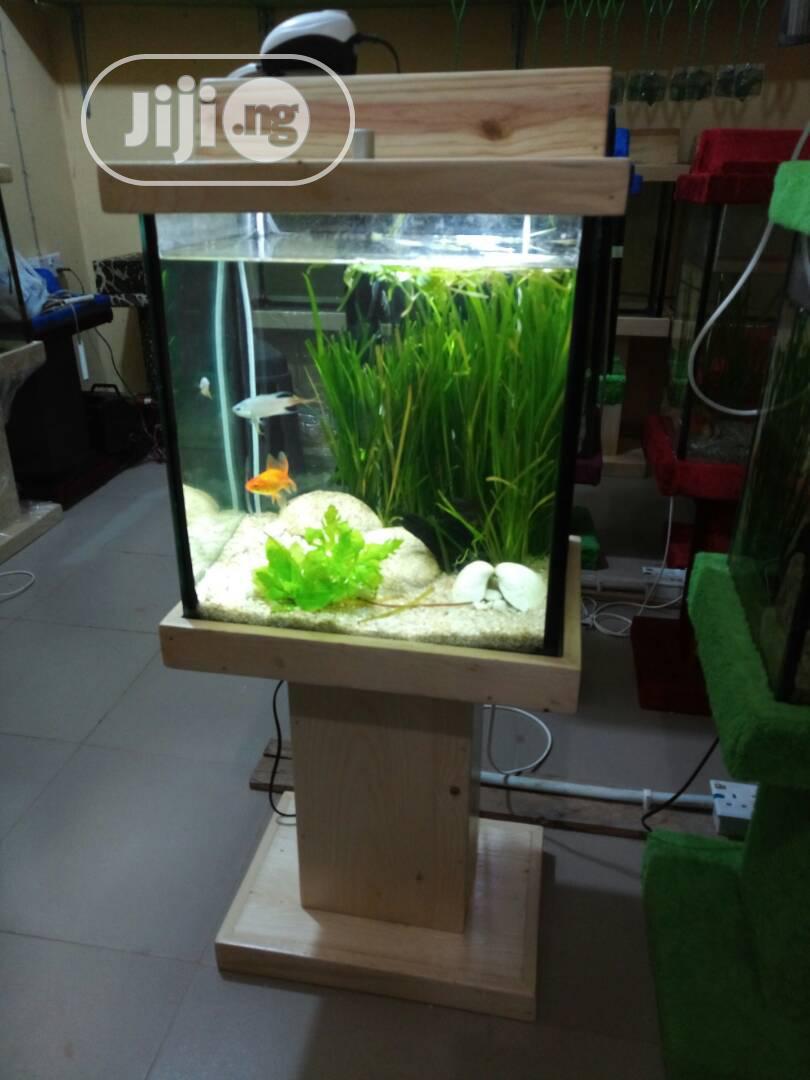 Standing Wooden Glass Aquarium For Sale
