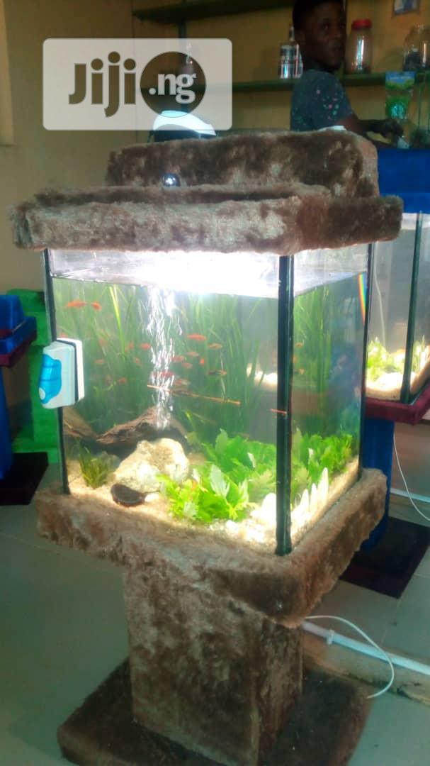 Standing Glass Aquarium