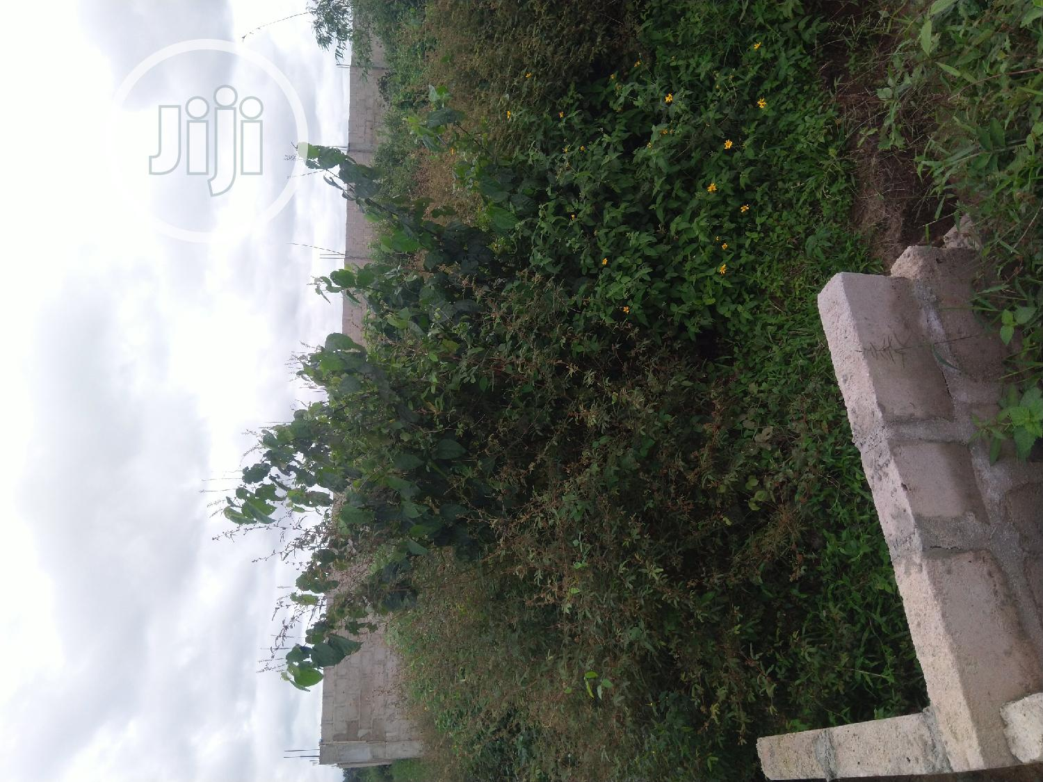 Archive: A Half Plot Of Land Located At Unity Estate Eneka .