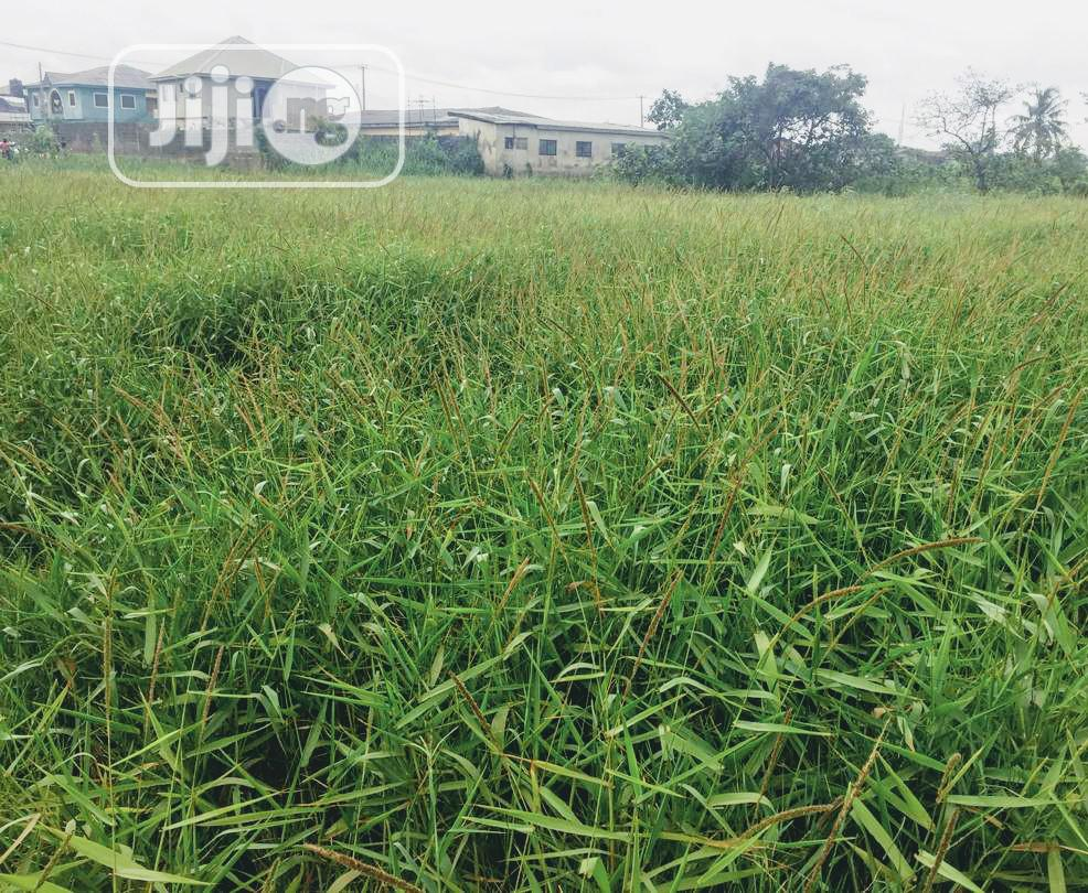 2 Plot Of Land | Land & Plots For Sale for sale in Mile 12, Kosofe, Nigeria