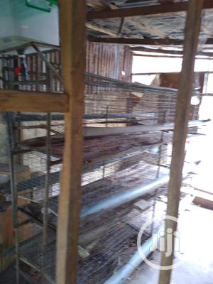 Layers Cage For Sale   Farm Machinery & Equipment for sale in Lagos State, Ifako-Ijaiye