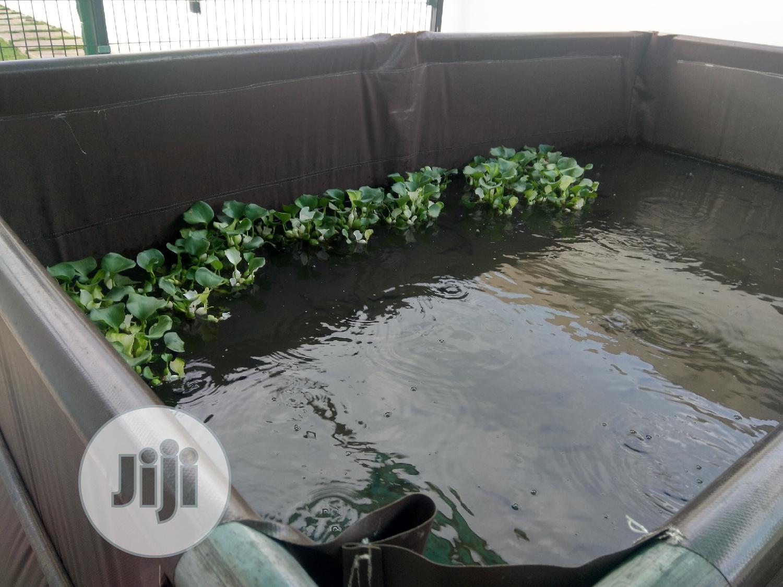 Tarpaulin Fish Pond
