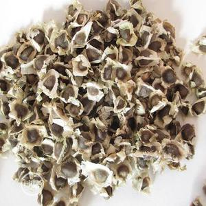 Moringa Seeds For Sale | Feeds, Supplements & Seeds for sale in Oyo State, Ogbomosho North