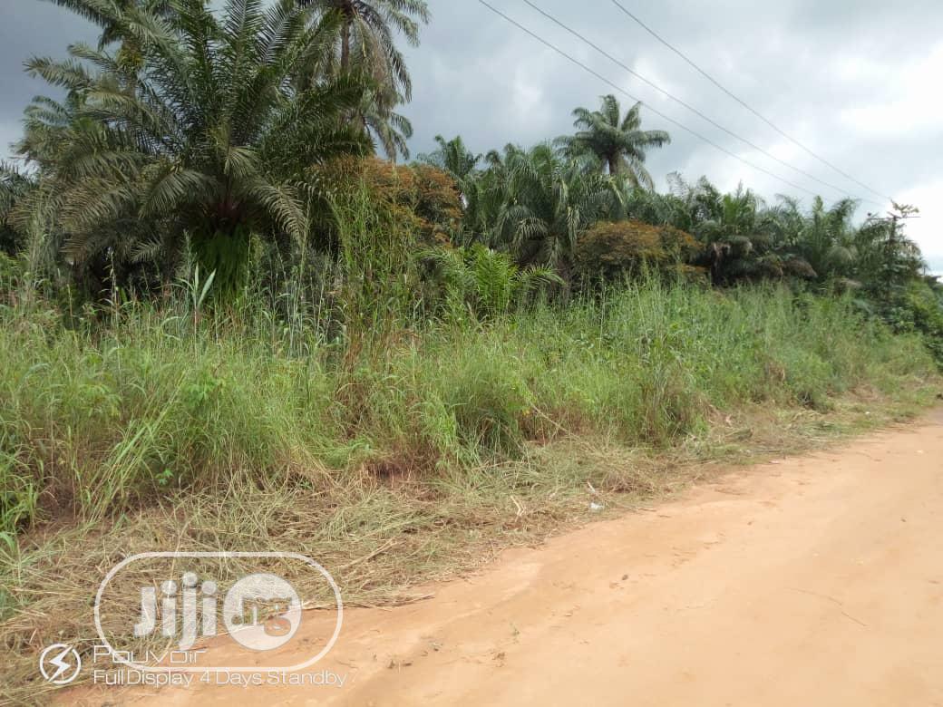 Lands For Sale @Flourish City Uyo,Ikono LGA Akwa Ibom | Land & Plots for Rent for sale in Uyo, Akwa Ibom State, Nigeria