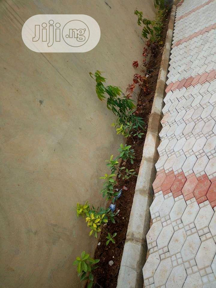 Archive: Gardening Services