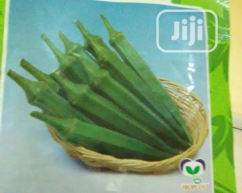 Hybrid Okra Seeds For Sale
