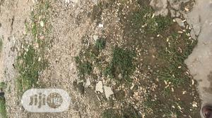 Urgent Sale Of Dry Land 300sqm At Magboro   Land & Plots For Sale for sale in Ogun State, Obafemi-Owode