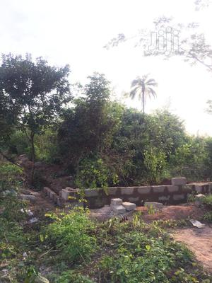 4 Plots(Acre) of Land Okpanam 5minutes Drive Frm Asaba | Land & Plots For Sale for sale in Delta State, Oshimili North