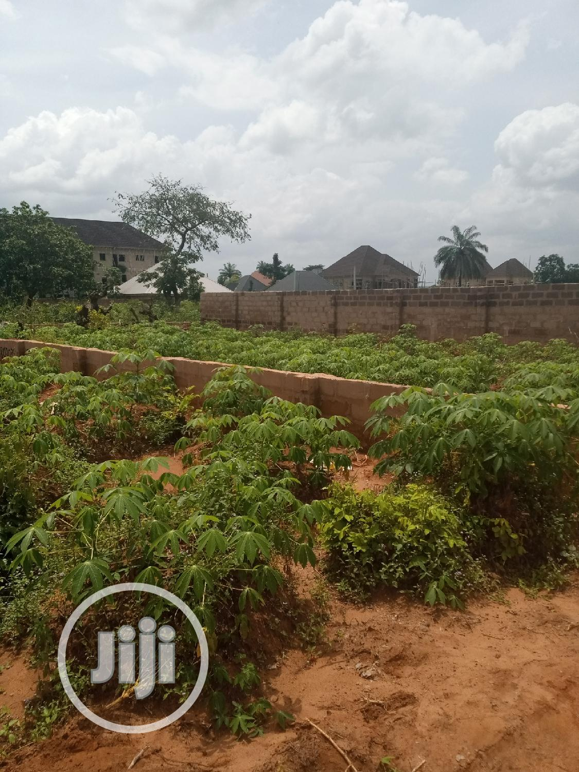 1 Plot Of Land In Isu Awka, Anambra State For Sale | Land & Plots For Sale for sale in Awka, Anambra State, Nigeria