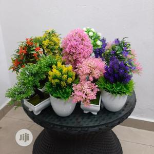 Mini Top Bonsai Tree Plants For Hotels | Garden for sale in Lagos State, Ikeja