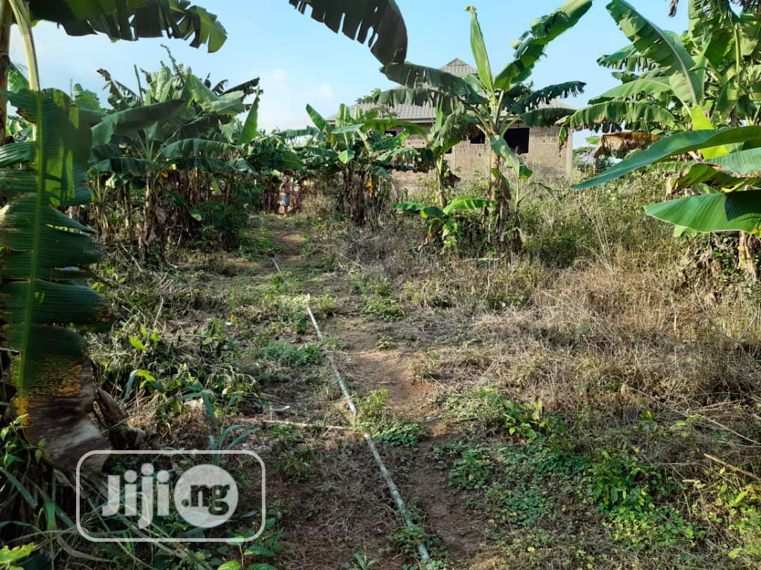 2 Plot of Land With C of O at Magboro Vai Ojodu Berger