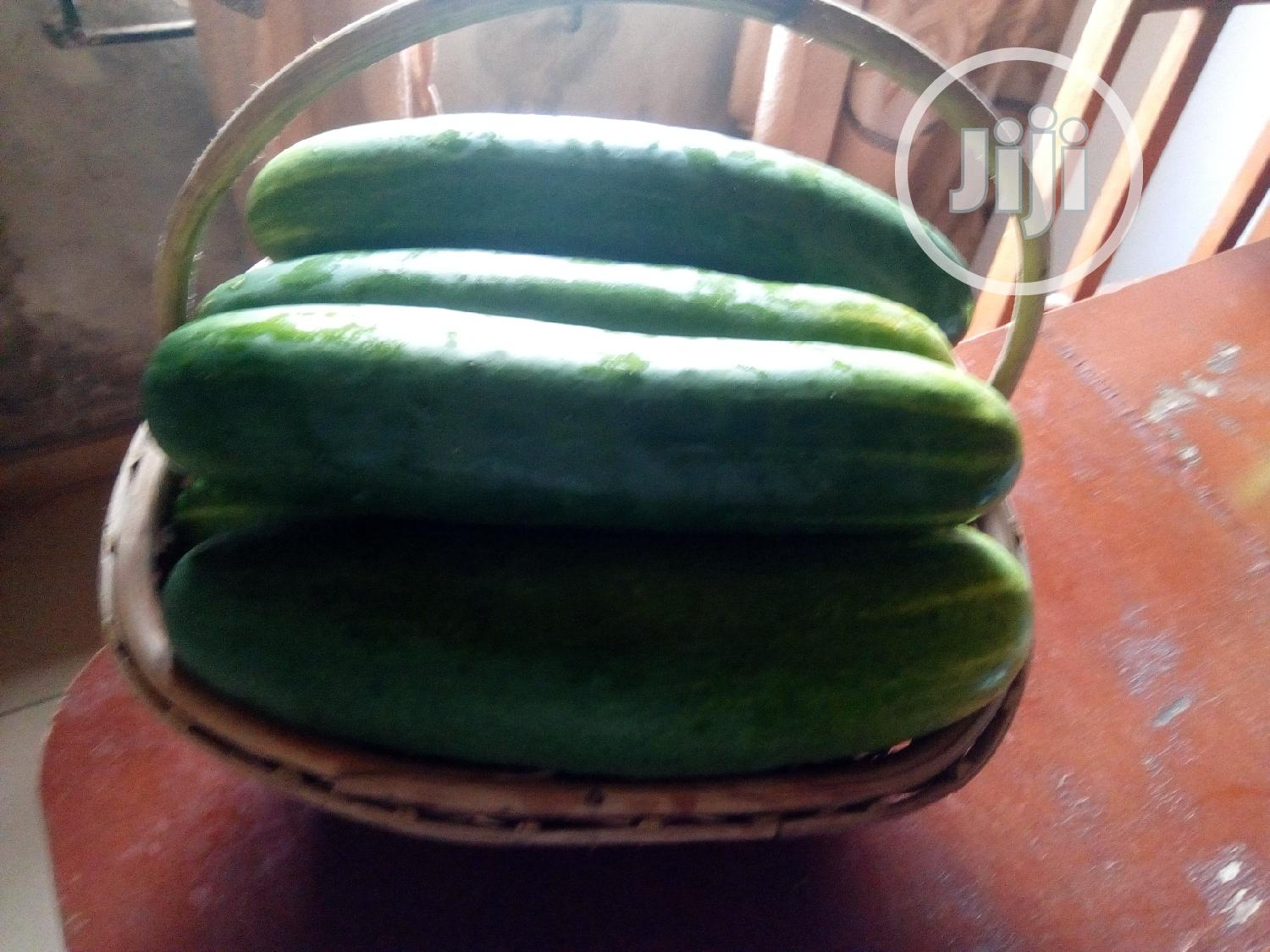 Archive: Cucumber 25kg (Fresh And Healthy)