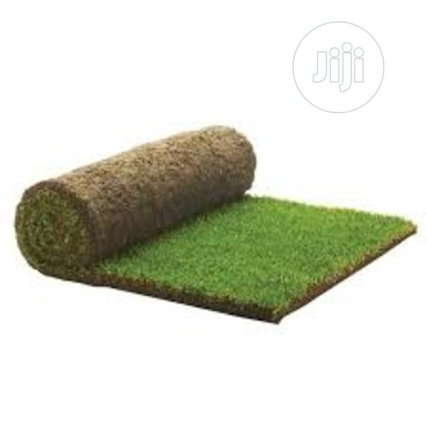 Archive: Artificial Grass
