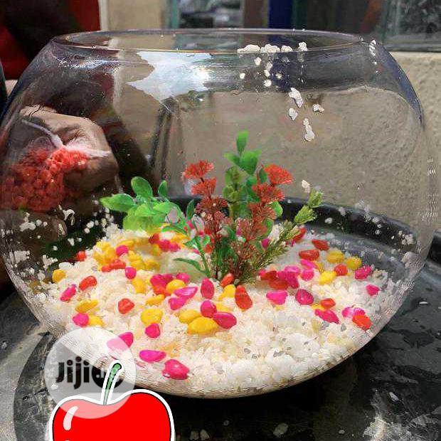 Well Set Fish Bowl
