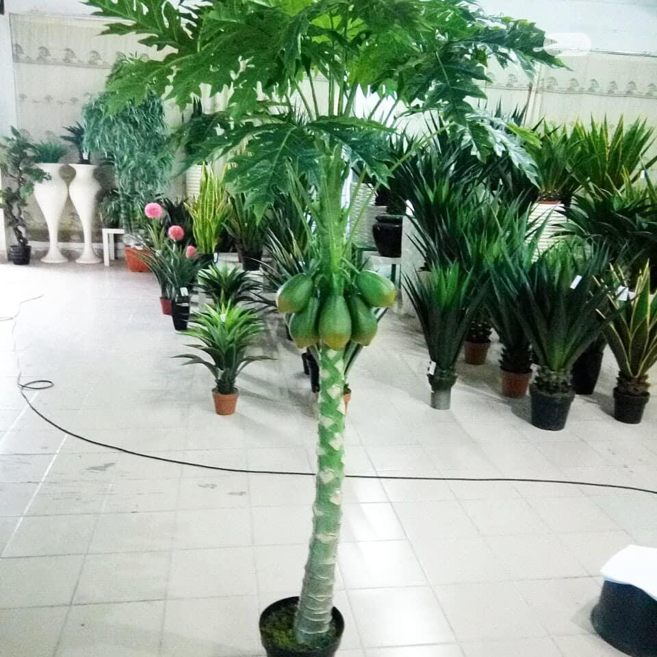 Unique 220cm Height, Artificial Paw-paw Tree