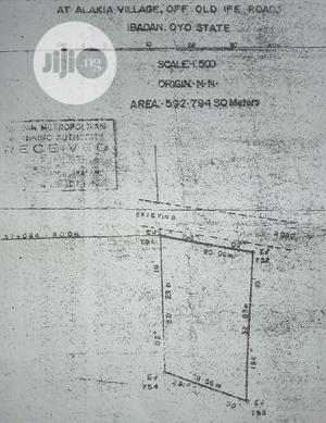A Standard Plot of Land  Old Plot With Red Copy S /Plan   Land & Plots For Sale for sale in Ibadan, Alakia