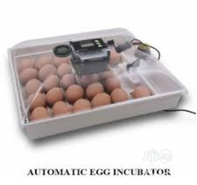 Automatic 112 Eggs Incubator | Farm Machinery & Equipment for sale in Dei-Dei, Abuja (FCT) State, Nigeria
